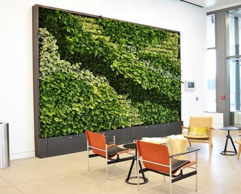 green wall Interior greenscapes plant design boise idaho (62)