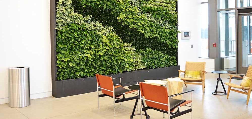 Interior greenscapes plant design boise idaho (62)